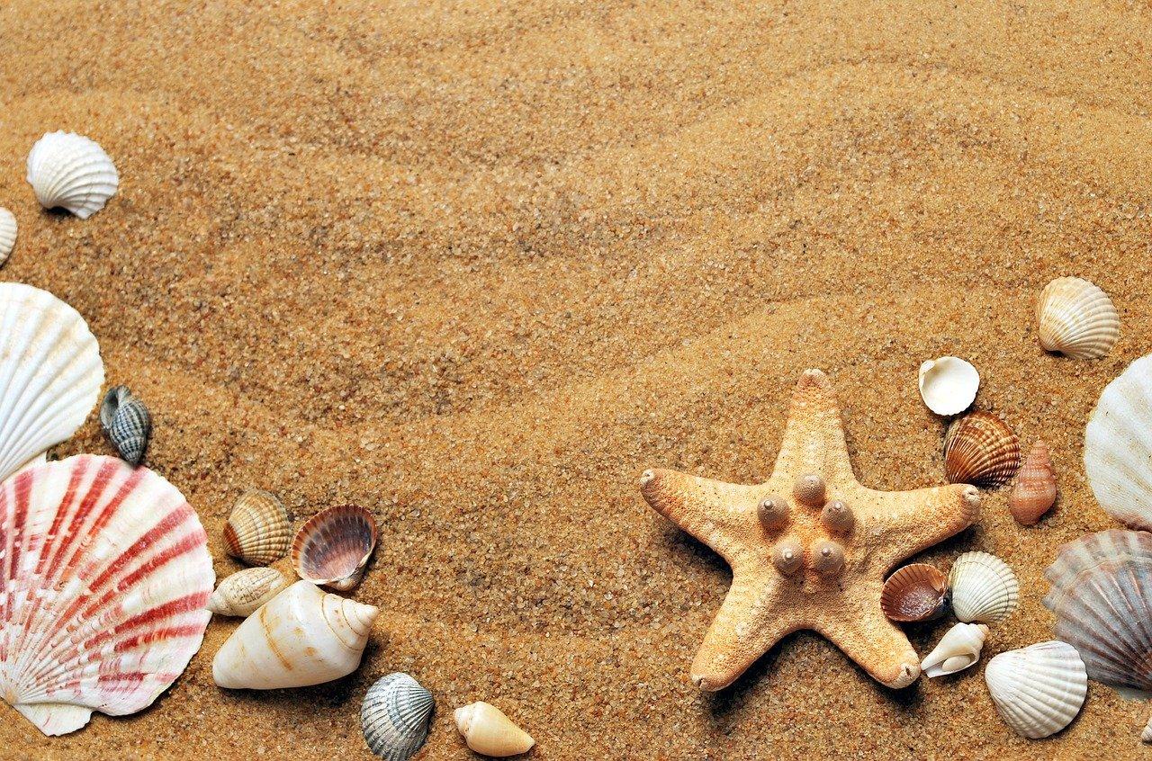 Comment porter des bijoux vikings à la plage ?